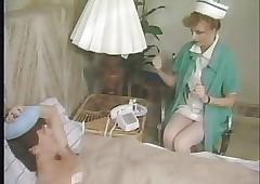 护士免费xxx-老式的猫